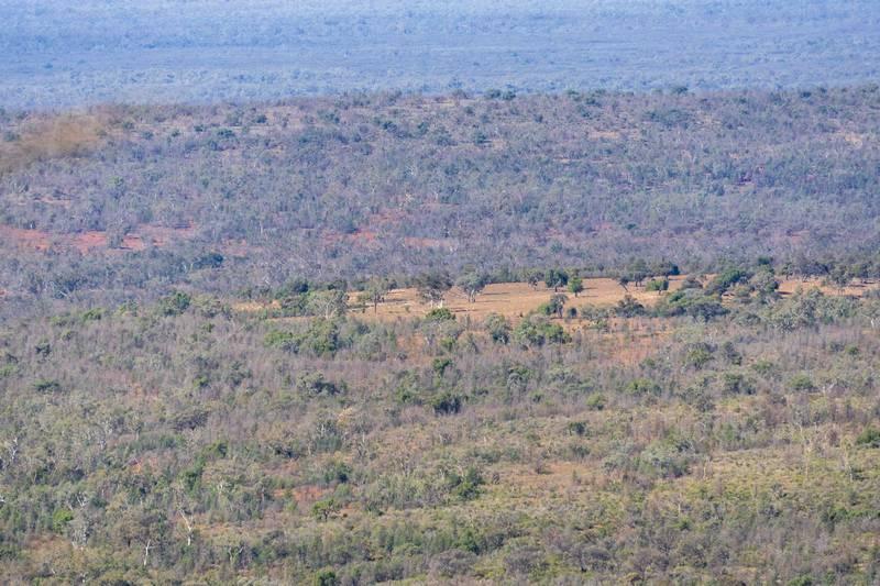 Clearing approximately at SE corner of park boundary within Gunderbooka Range